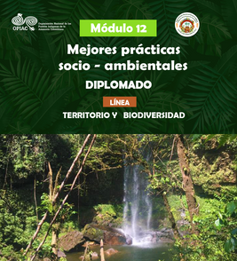 Duodécimo módulo de formación: Mejores prácticas socio – ambientales
