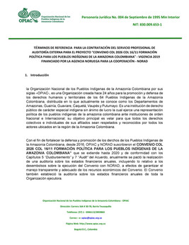 TÉRMINOS DE REFERENCIA PARA LA CONTRATACIÓN DEL SERVICIO PROFESIONAL DE AUDITORÍA EXTERNA