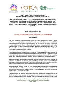 CARTA ABIERTA DE LOS PUEBLOS INDÍGENAS, DECLARATORIA DE EMERGENCIA AMBIENTAL Y HUMANITARIA