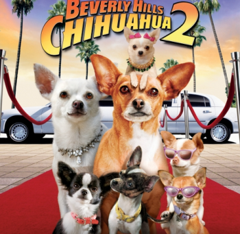 Beverly Hills Chihuahua 2 (A PopEntertainment.com Video Review)