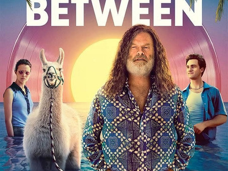 The Space Between (A PopEntertainment.com Movie Review)