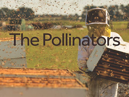 The Pollinators (A PopEntertainment.com Movie Review)