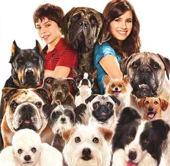 Hotel For Dogs (A PopEntertainment.com Movie Review)