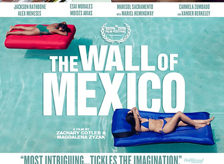 The Wall of Mexico (A PopEntertainment.com Movie Review)