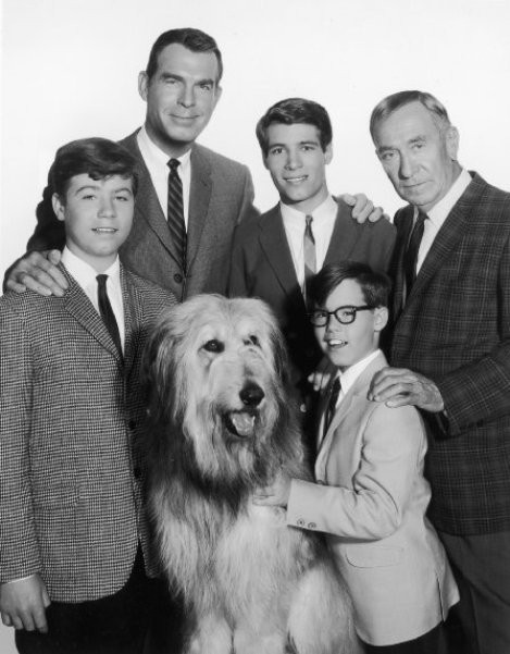 "Don Grady, Fred McMurray, Stanley Livingston, Barry Livingston and William Demarest in ""My Three Sons."""
