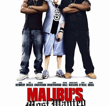 Malibu's Most Wanted (A PopEntertainment.com Movie Review)