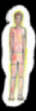 טיפוס פיטה - מבנה גוף | VEDA | איורוודה | רועי רייפלד