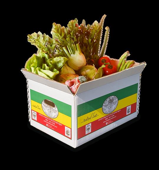 סל ירקות אורגני גדול חוות שורשים