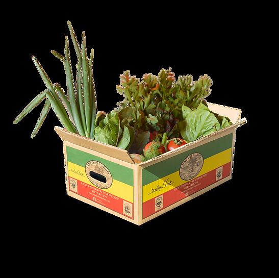 סל ירקות אורגני קטן חוות שורשים