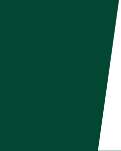 dark-green-background.png