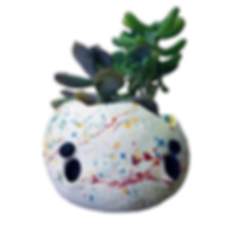 planter 2.png