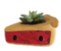 planter 3.png