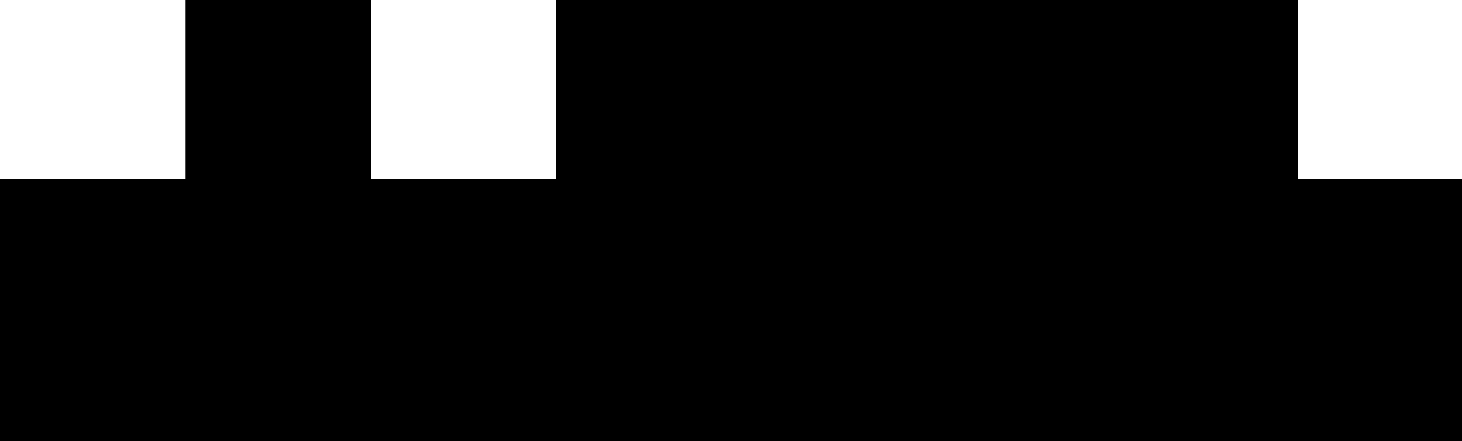 5b1b857c988ef94d357f3745_logo_pib_horizo