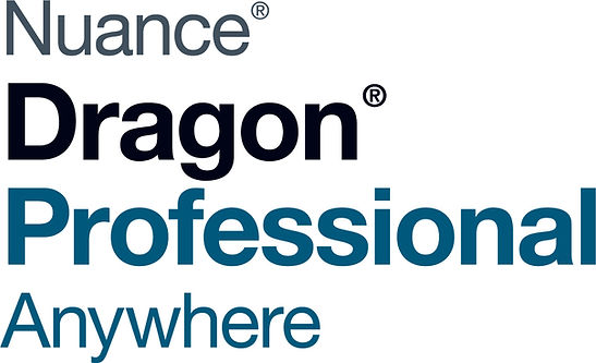 dragon professional anywhere.jpg