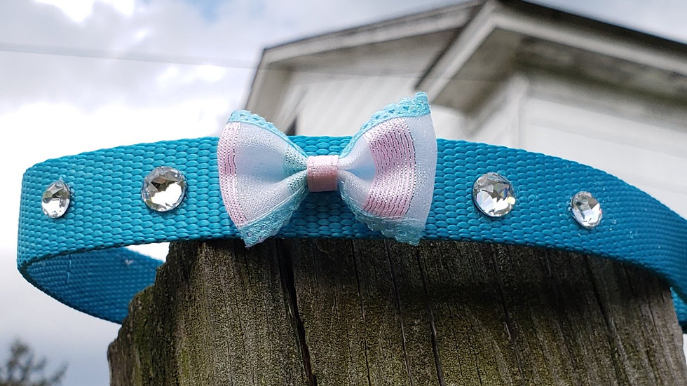 Aqua Dog Collar with Swavosrki Crystals