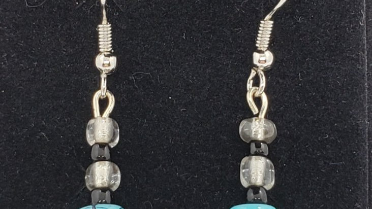 Turquoise/Black Earrings