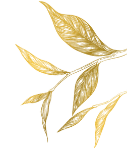 right-leaf.png