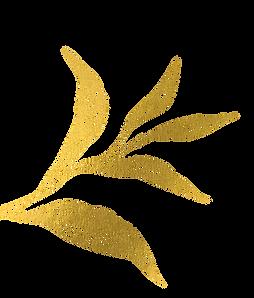 left-leaves.png