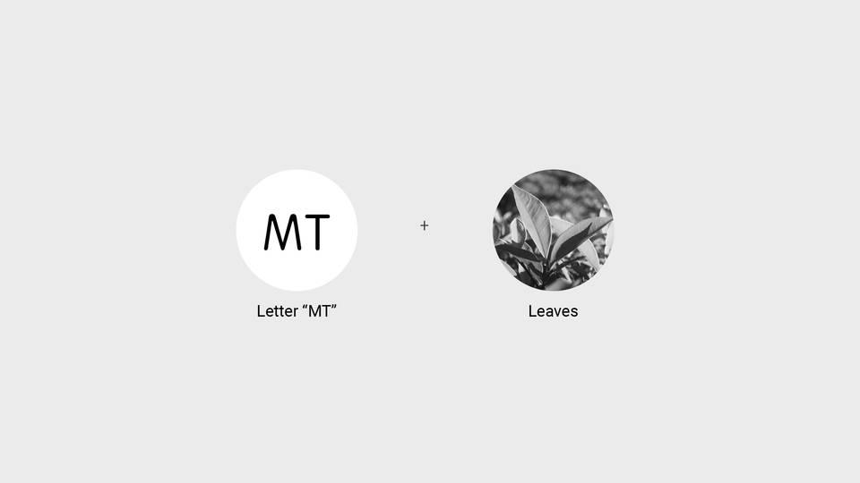 mt-9.jpg