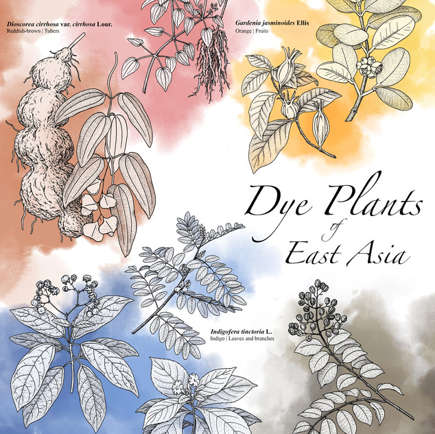Dye Plants of East Asia