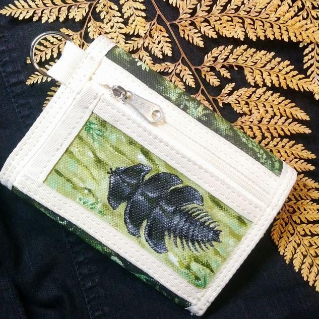 Platerodrilus, trilobite beetles
