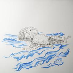 Sea otters 海獺