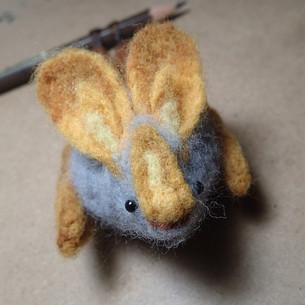 Yellow-winged bat, Lavia frons II