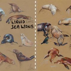 Liquid sea lions