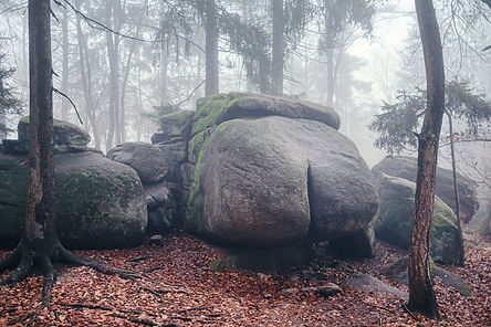 Devil Ass Stone, Fog in Forest - Autumn