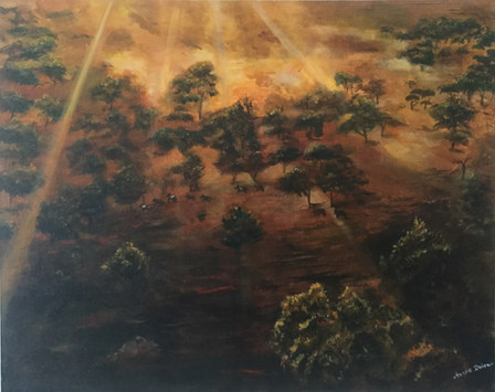 Andre Dubro 'Outback At Dusk'