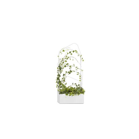 offecct-green-divider4jpg