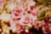 191217_Fotos-Dez-Februar-Hit_028.jpg