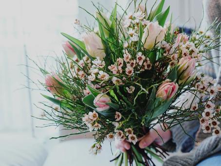 Die Tulpe ist weltweit eine der beliebtesten Frühlingsblumen