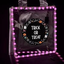 Light up Halloween Bag.jpg
