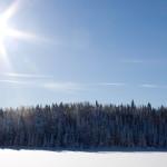 Laurentian_Winter_26_of_30-150x150