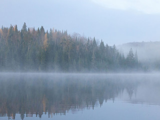 Morning Mist on Lake Birch