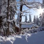 Laurentian_Winter_28_of_30-150x150