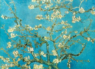 Van Gogh at the National Gallery sets Attendance Records