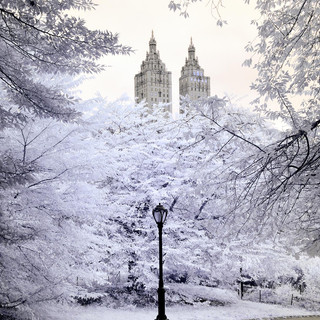 Central Park, Infrared