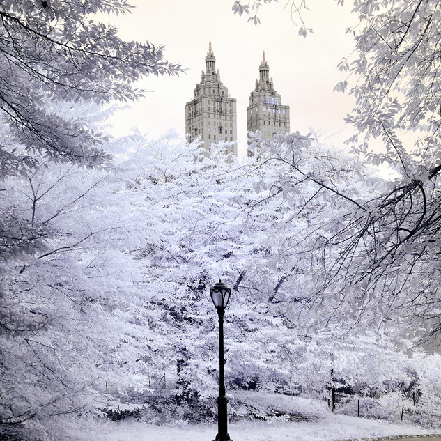 Central Park, Infrared