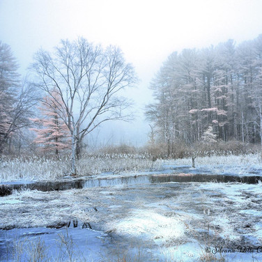 Winter in Infrared