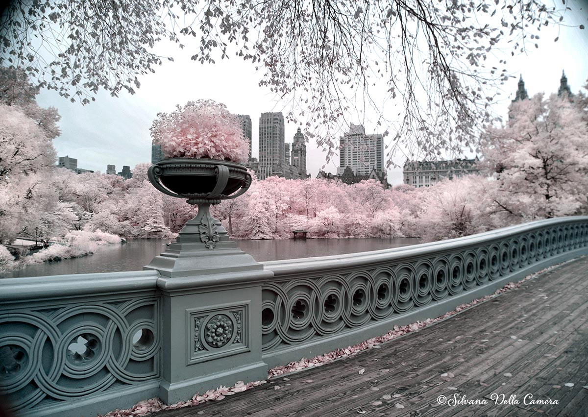 Bow Bridge in Infrared