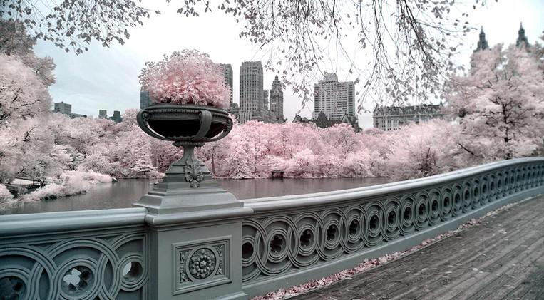 Bow Bridge in Infrared