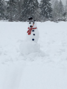 Ya gotta have a snowman...right?