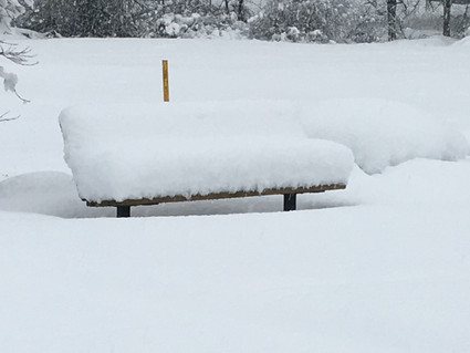 Tired of walking in the snow...have a seat...