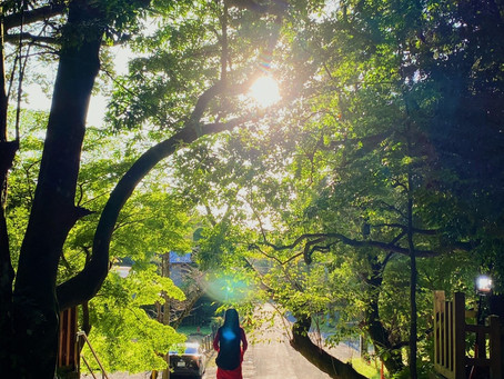 【9/28 香取神宮✨鹿島神宮へ参拝に行って参りました】