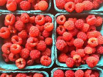 will be in the farmstand this weekend_ _1. First raspberries!_2. Shiny carrots_3.jpg