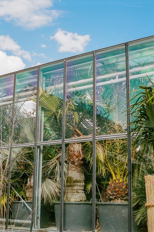 Innsbruck University Botanical Garden