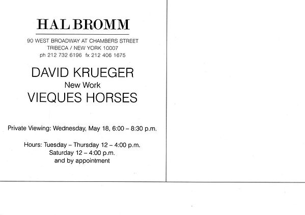 David Krueger, Vieques Horses_back.jpg