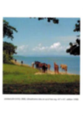 David Krueger, Vieques Horses.jpg
